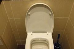 tualet_unitaz